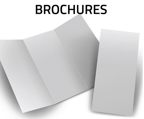 Important Details to Know About Brochures